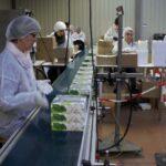Ligne production montage garnissage coffrets cosmétique